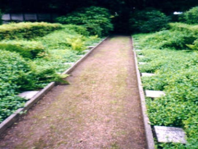 Die Grabsteine für Zwangsarbeiter auf dem katholischen Friedhof an der Blankensteiner Straße. Foto: Volksbund Deutsche Kriegsgräberfürsorge e. V.