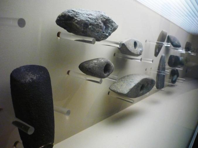 Die Steinartefakte-Sammlung des Stadtmuseums. Foto: Lars Friedrich
