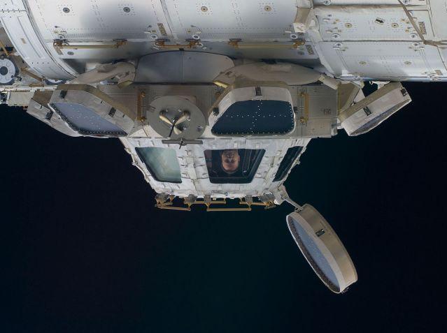 NASA-Astronaut Ron Garan, Flugingenieur der Expedition 28, in einem Fenster der ISS-Kuppel. Foto: NASA