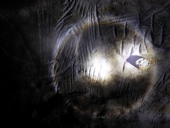 Höhlenbären haben ihre Krallen am unteren Rand dieser Mamuthdarstellung gewetzt. Foto: Lars Friedrich