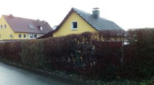 Heute hinter einer Dornröschenhecke versteckt: Zimmermanns Bude in Welper. Foto: Lars Friedrich